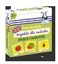 Karty obrazkowe Angielski dla malucha Owoce i warzywa