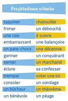 Francuski Fiszki PLUS dla średnio zaawansowanych 3 - kurs języka francuskiego